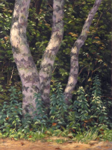 "Will Kefauver oil painting, ""Vineyard Beech"""